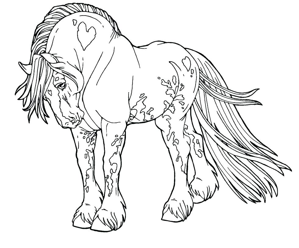 981x814 How To Draw Horse Coloring Pages Animals For Kids Art Colors