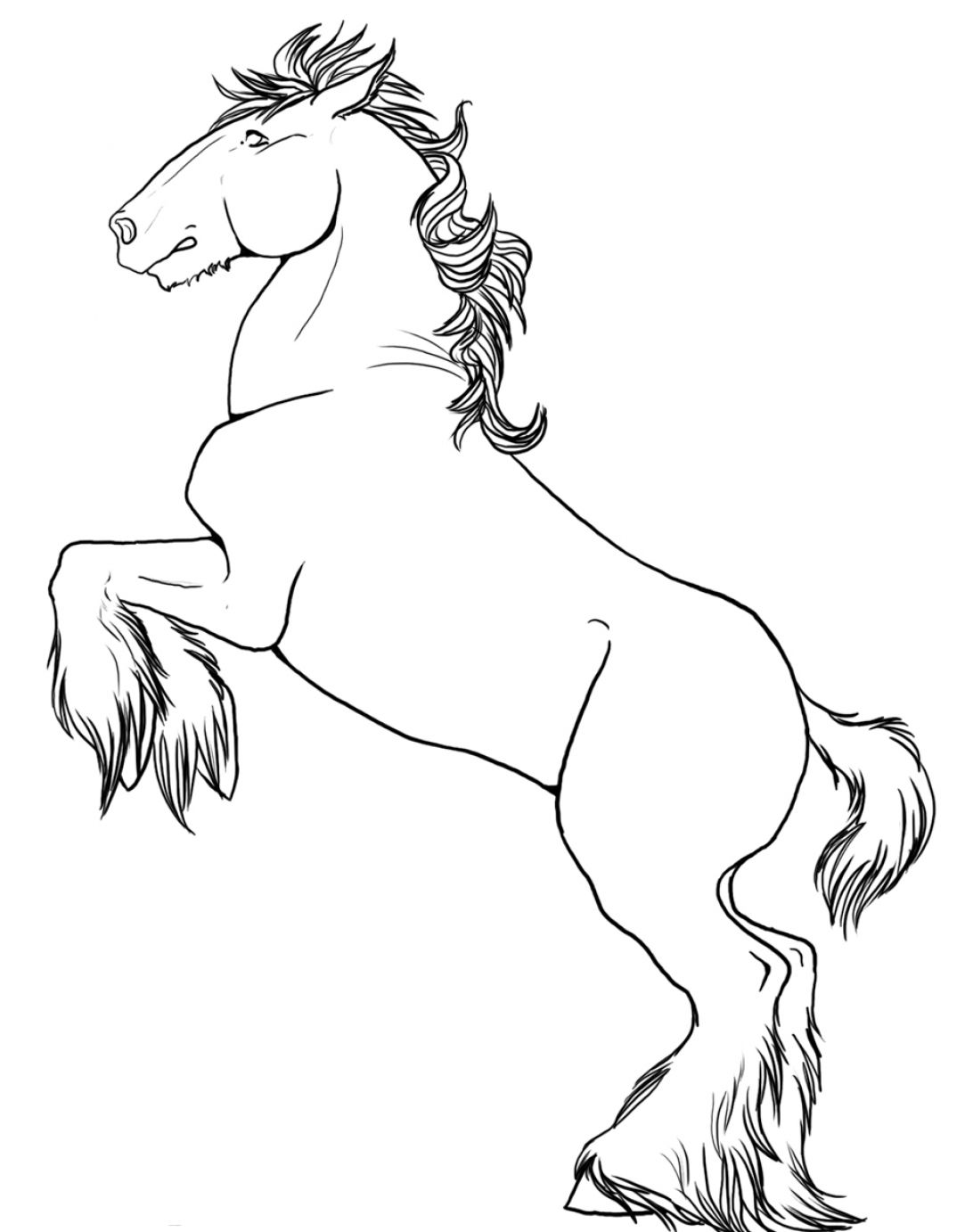 1092x1382 How To Draw A Horse Rearing Pictures Free Coloring Pages