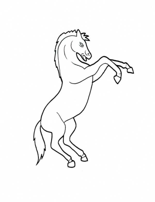 600x778 Picture Of Horse Rearing In Horses Coloring Page