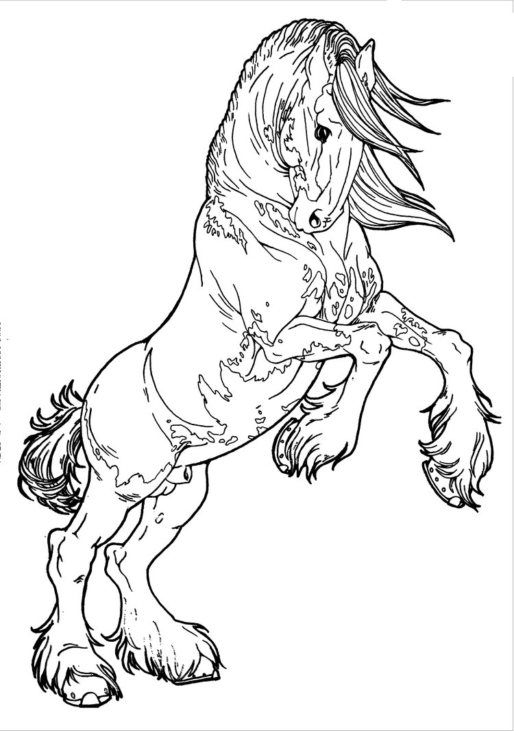 750x1066 Realistic Rearing Horse Coloring Pages