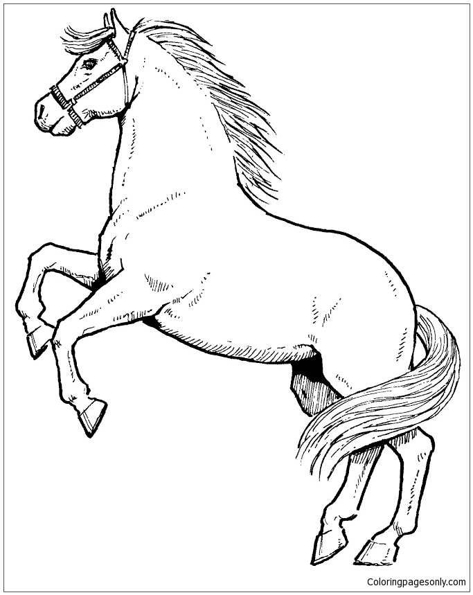 683x859 Rearing Horse Coloring Page As You Know, Coloring Is Essential