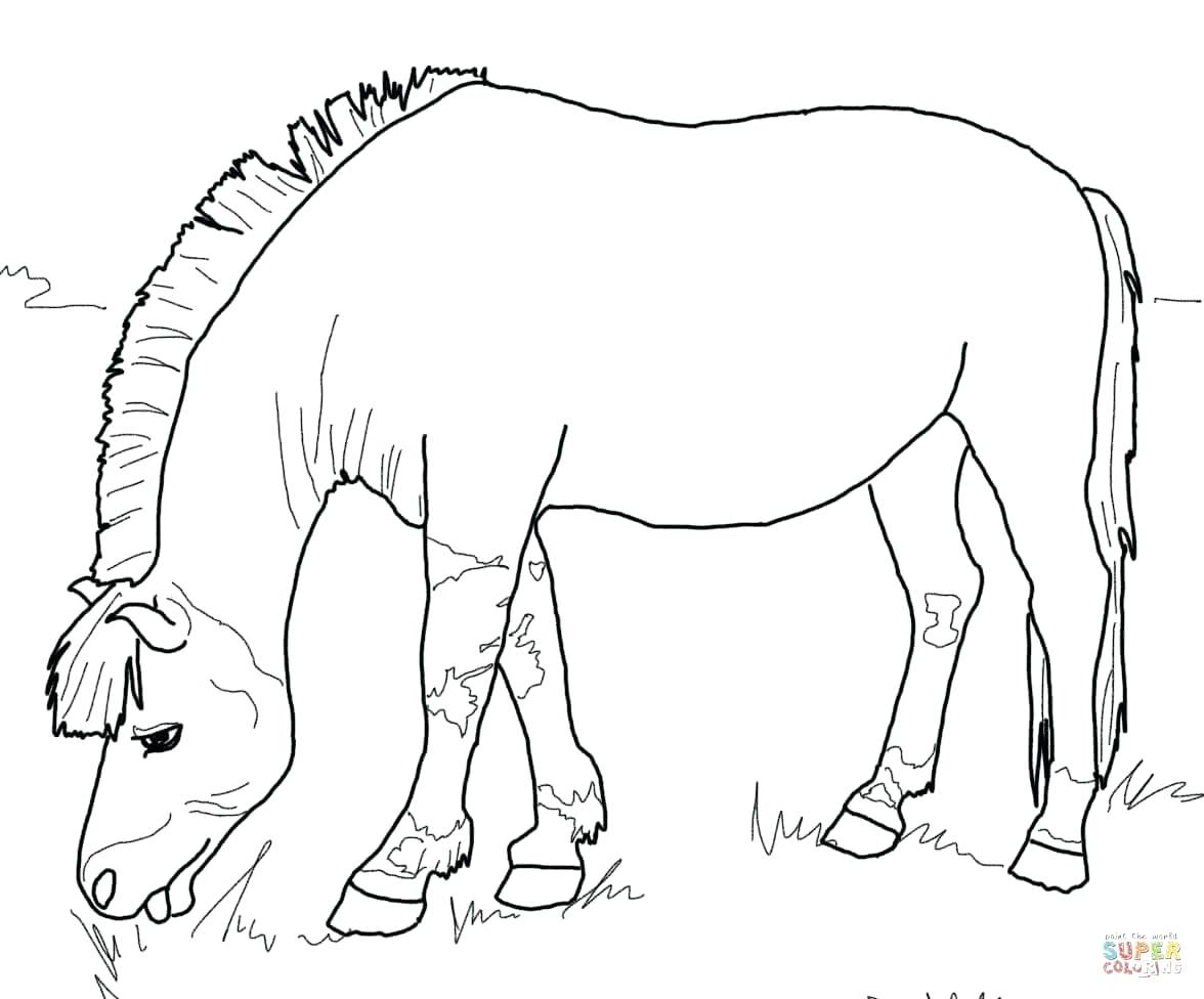 1176x976 Rearing Horse Coloring Page Free Printable Pages Walking In Horses
