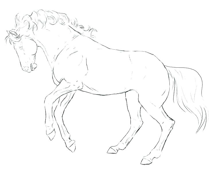 736x592 Breyer Coloring Pages Horse Coloring Pages Coloring Pages Free