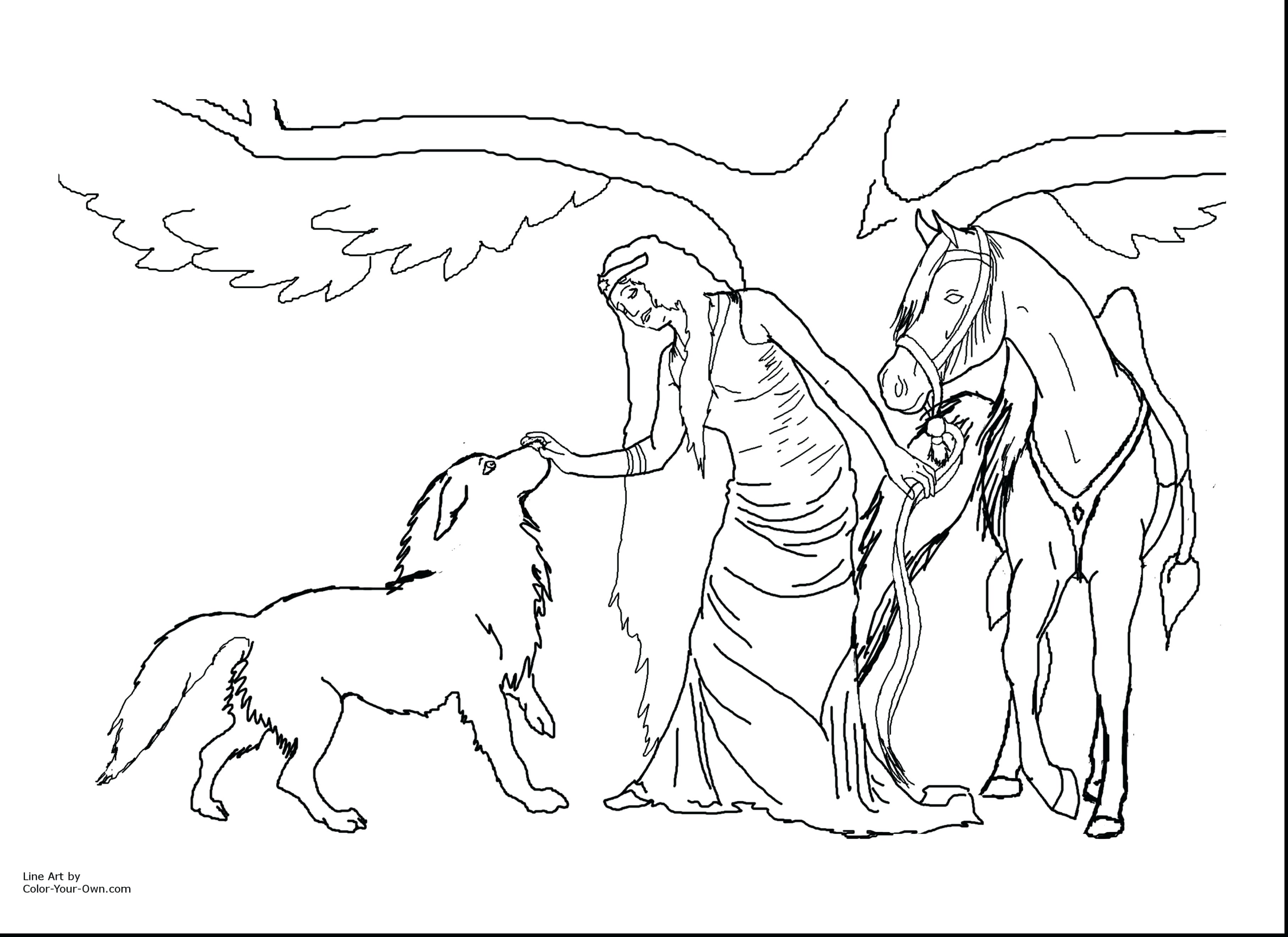 3630x2640 Coloring Pages Online Horse Rearing Pegasus Page Flowers Pdf Best