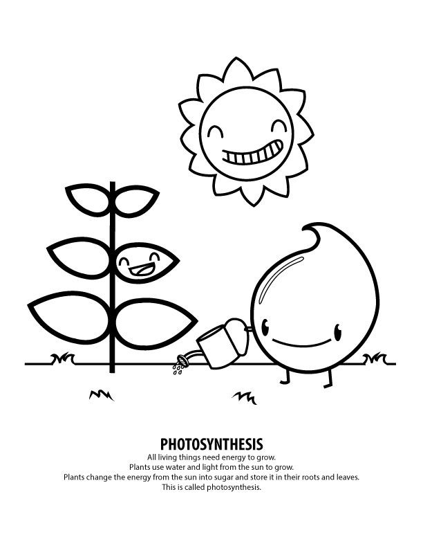612x792 Record Coloring Page Coloring Page