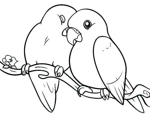 600x457 Cardinal Bird Coloring Page Coloring Page Bird Cardinal Bird