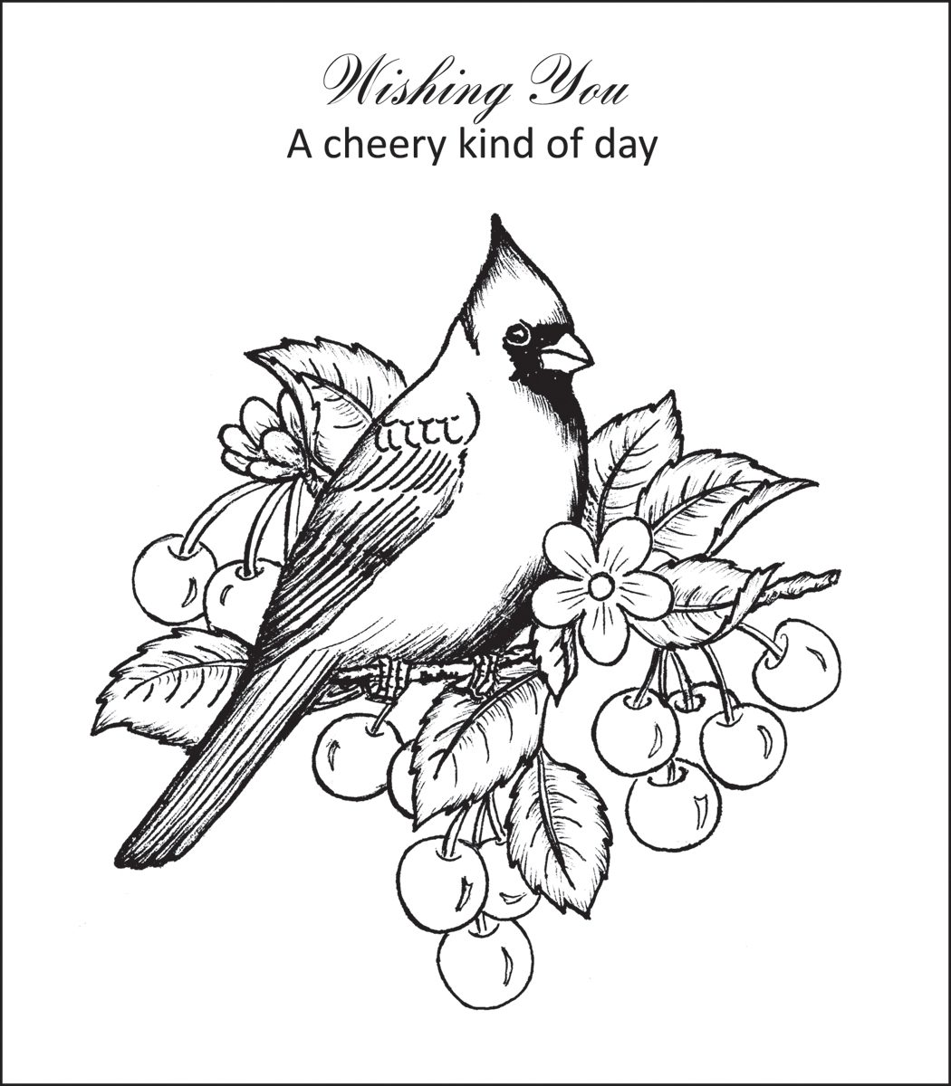 1050x1200 Cardinal Coloring Pages Red Bird Page Baseball Saint Louis St