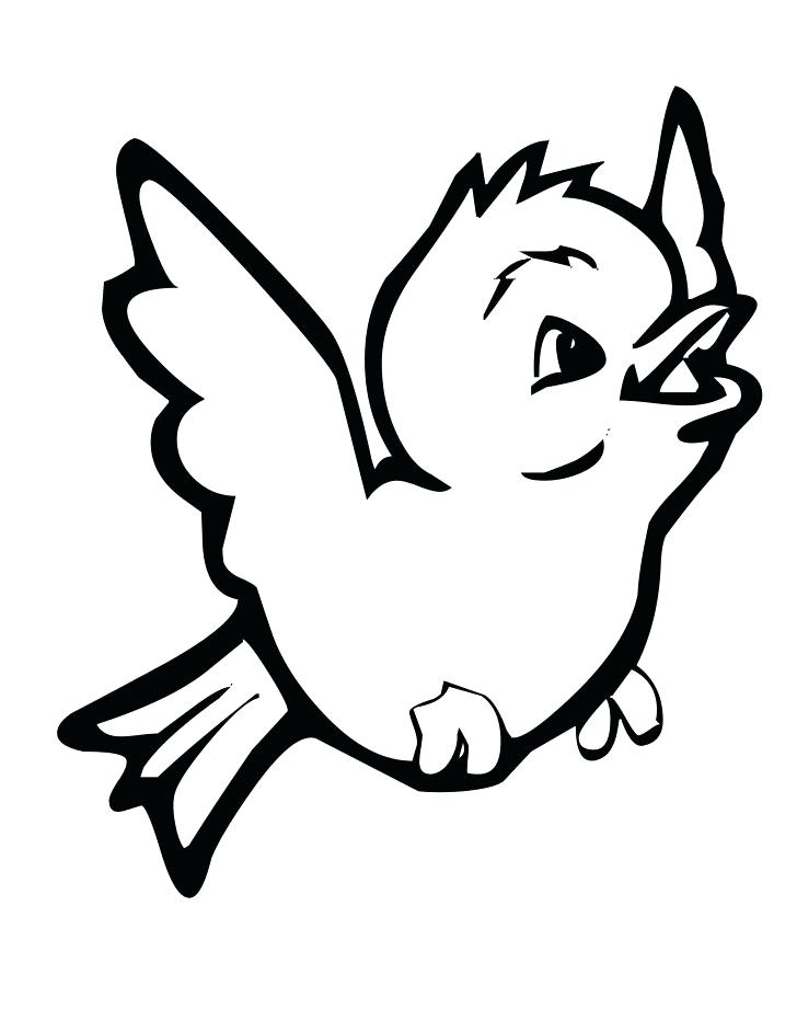 728x942 Red Cardinal Bird Coloring Page Printable Coloring Coloring Page