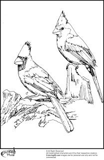 209x320 Two Red Cardinals Coloring Page From Northern Cardinal Category