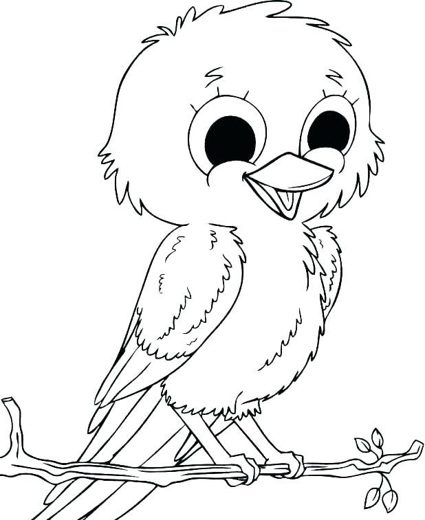 618x757 Cardinal Bird Coloring Page