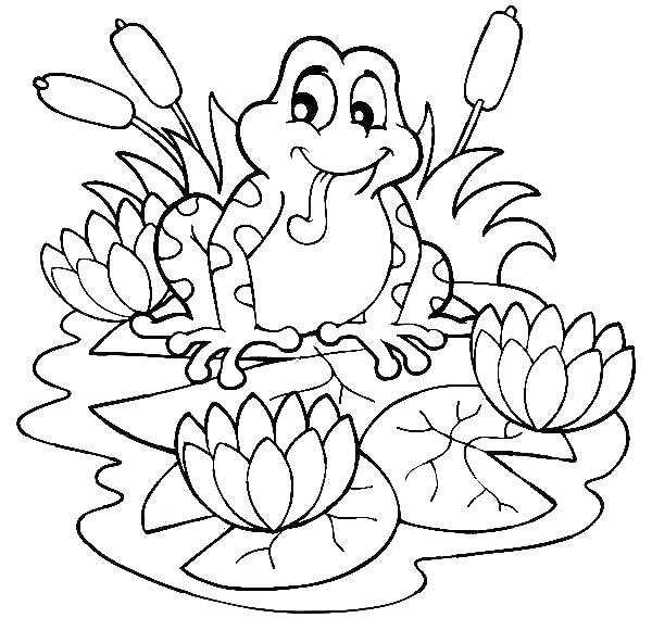 600x569 Lotus Flower Coloring Page Lotus Flower Coloring Page Frog