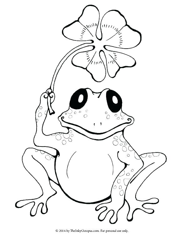 588x762 Frog Coloring Pages