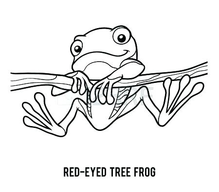 450x396 Red Eyed Tree Frog Coloring Page