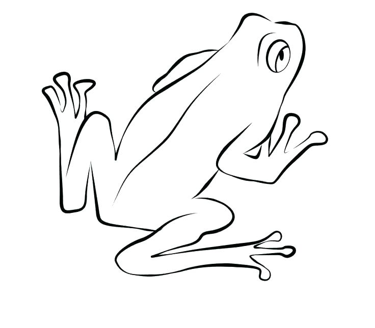 736x644 Coloring Page Of A Frog Printable Frog Coloring Pages Frogs