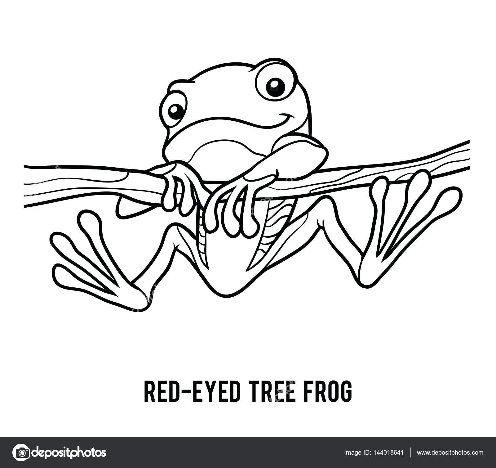 1600x1508 Fresh Coloring Red Eyed Tree Frog Coloring Page