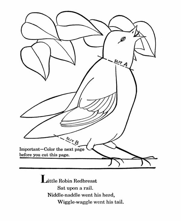 600x734 Little Robin Redbreast Coloring Page
