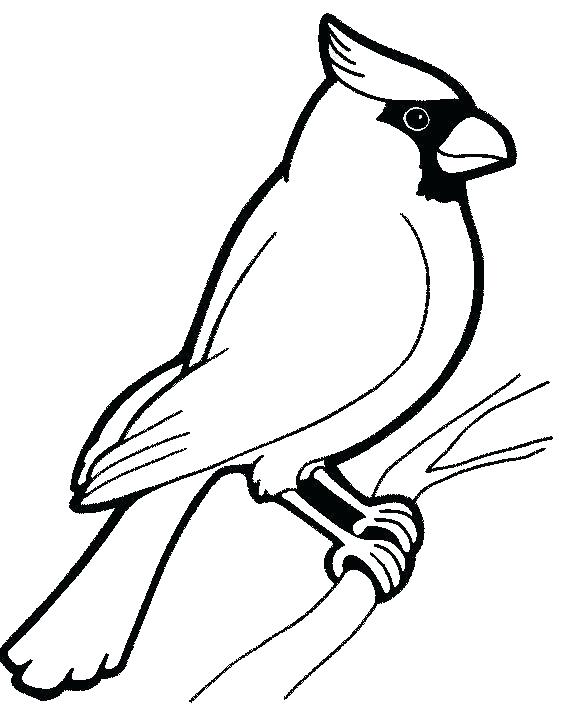 579x725 Robin Bird Coloring Pages Baby Bird Coloring Page Robin Bird