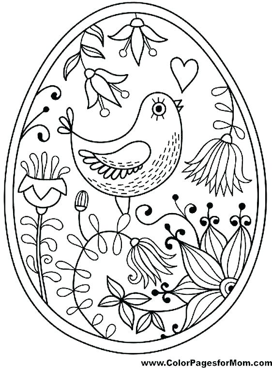 562x760 Birds Coloring Pages Cool Bird Coloring Pages Red Robin Bird Birds