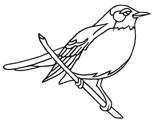 600x473 Robin Bird Coloring Pages Robin Bird Coloring Pages State Page Red