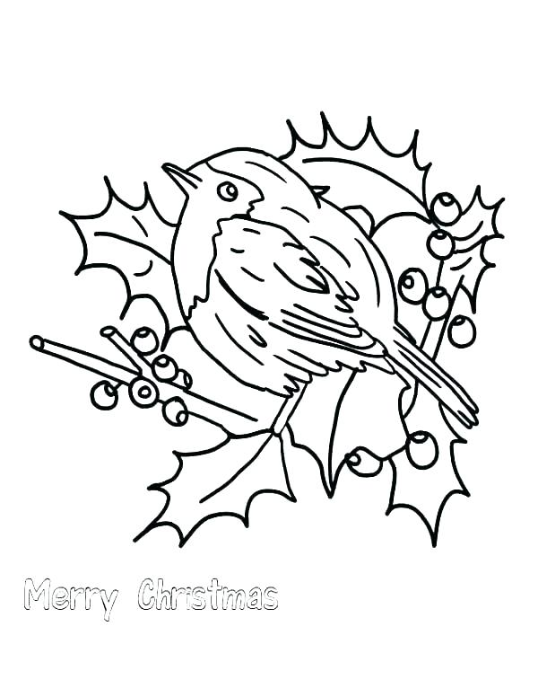 600x776 Robin Coloring Page Red Robin Bird Coloring Pages Printable