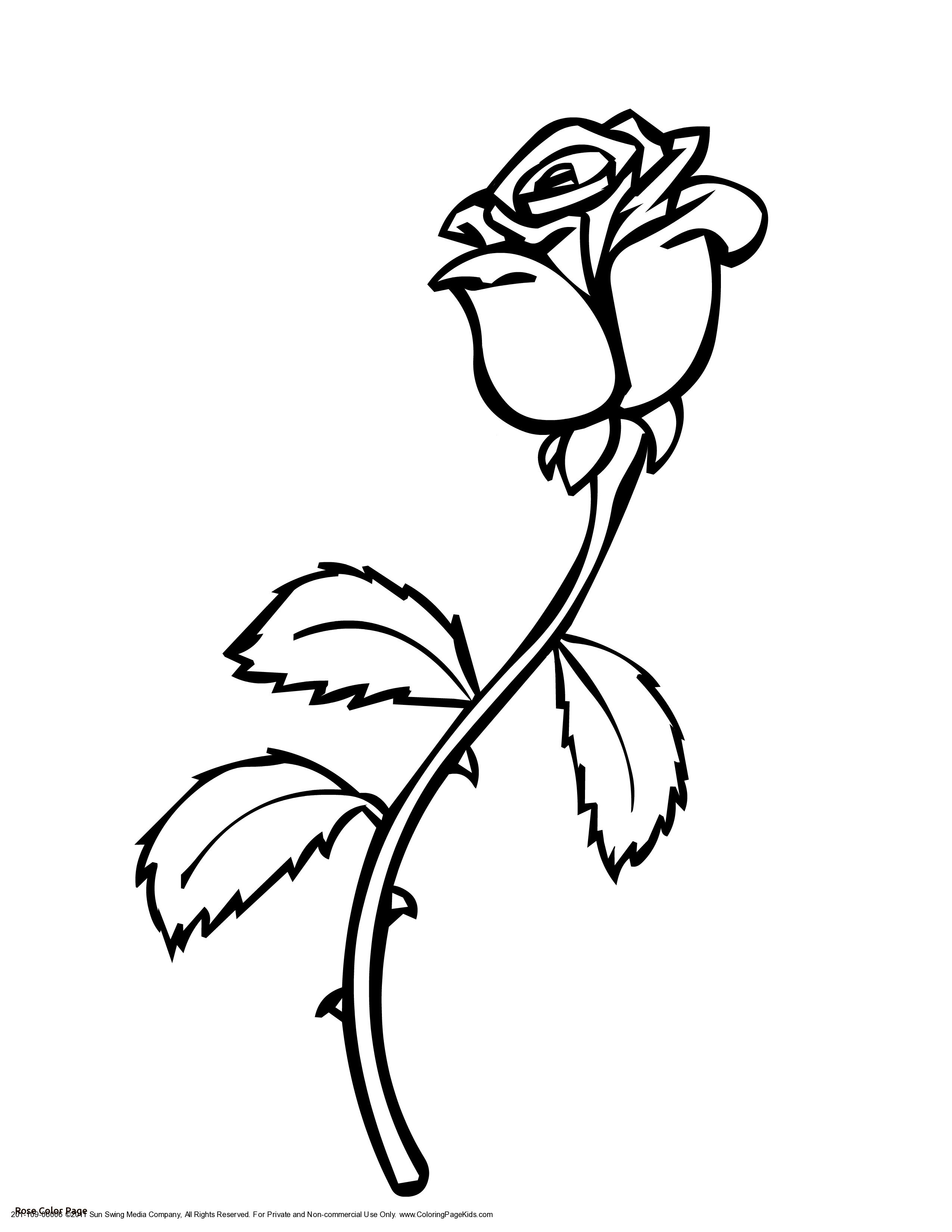 2550x3300 Printable Red Rose Valentines Coloring Pages Valentine Printables