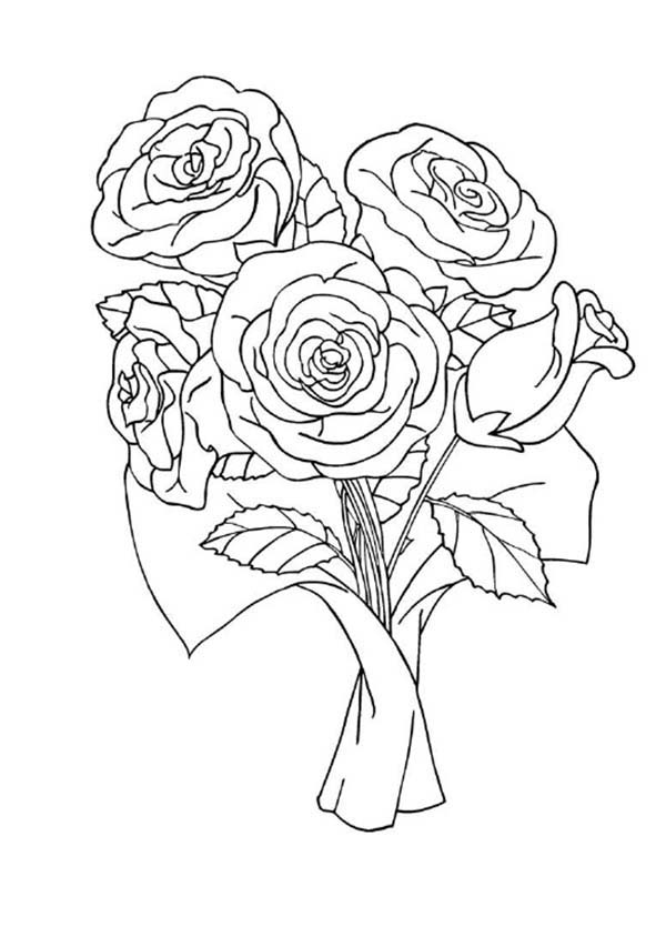 600x853 Red Rose Coloring Page