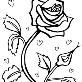 268x268 Red Rose Coloring Page Kids Drawing And Coloring Pages