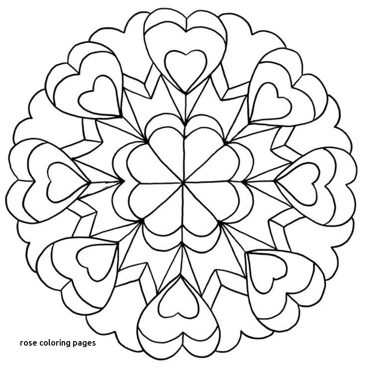 736x740 Red Rose Coloring Page Things To Color For Rose Coloring