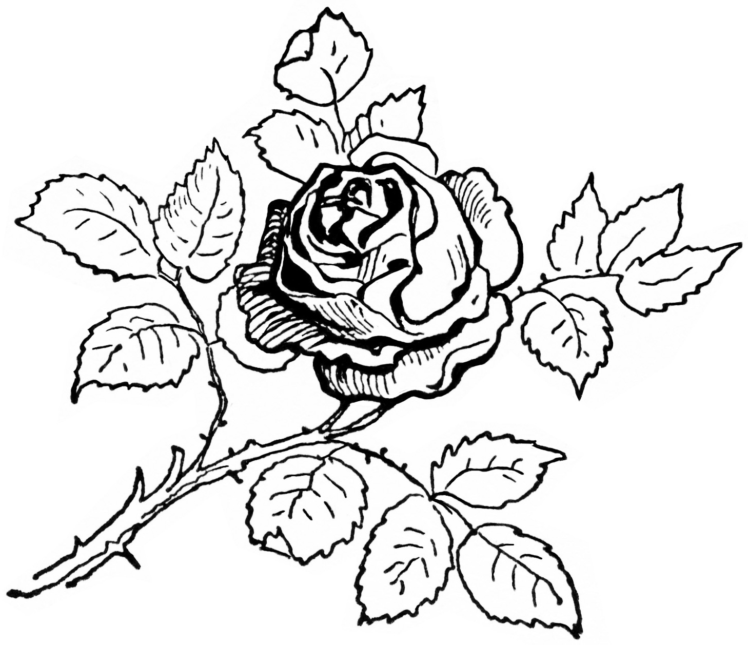 1458x1257 Rose Coloring Page