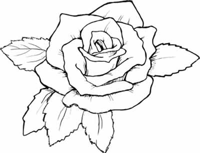 400x307 Coloring Pages Roses Red Rose Coloring Page Printable Kids Pages