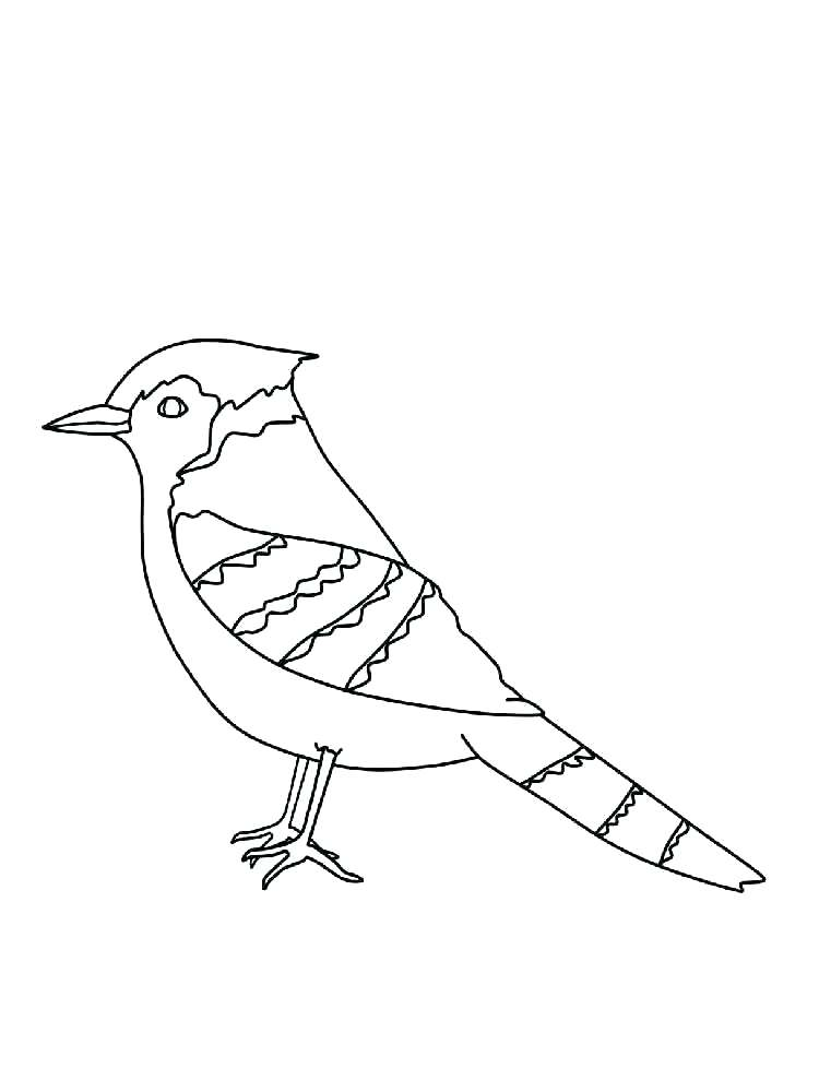 750x1000 Red Tailed Hawk Coloring Page Red Tailed Hawk Coloring Page Red