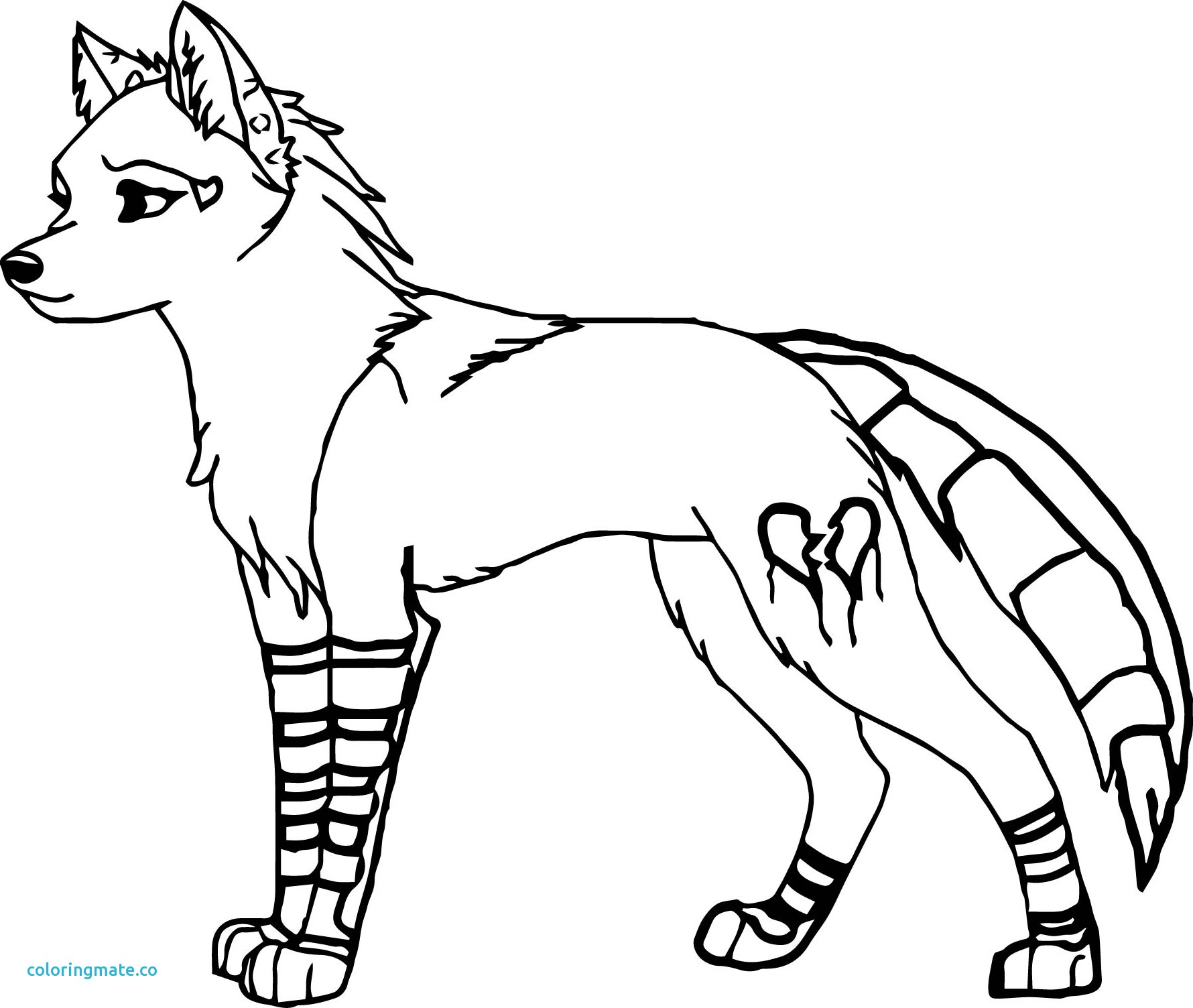 1780x1504 Ideas Collection Wolf Fighting Coloring Pages For Coloring Pages