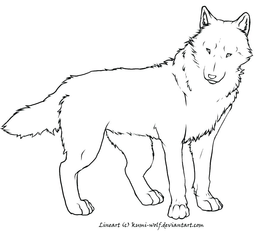 900x780 Red Wolf Coloring Pages Super Wolf Coloring Page Red Wolf Coloring