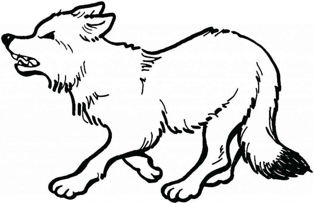 1024x665 Coloring Page Peter And The Wolf Coloring Pages Free Download