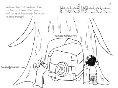 400x300 Coloring Page Redwood National Park Sophie And Sadie