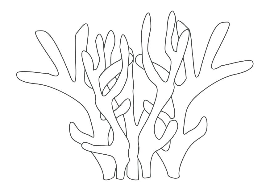 875x620 Coral Reef Coloring Pages Coral Coloring Pages Elegant Coral Reef