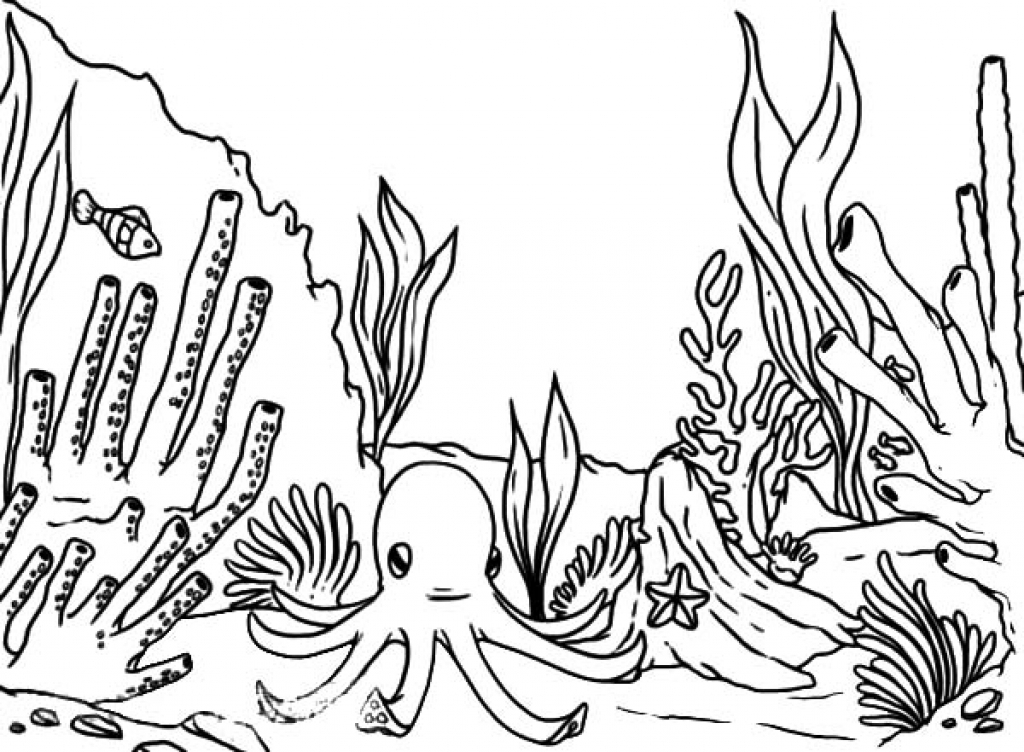 Reef Coloring Pages at GetDrawings | Free download