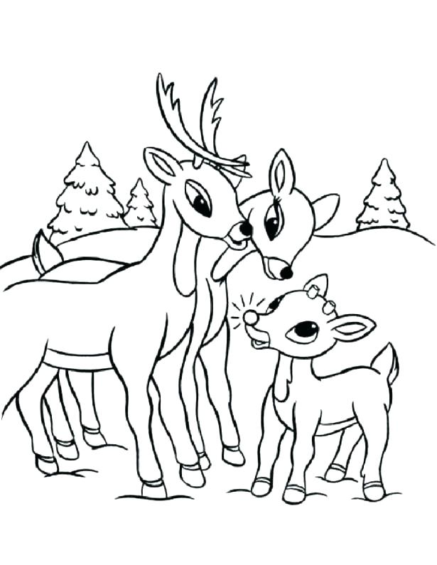 615x795 Coloring Pages Reindeer The Red Nosed Reindeer Coloring Sheet