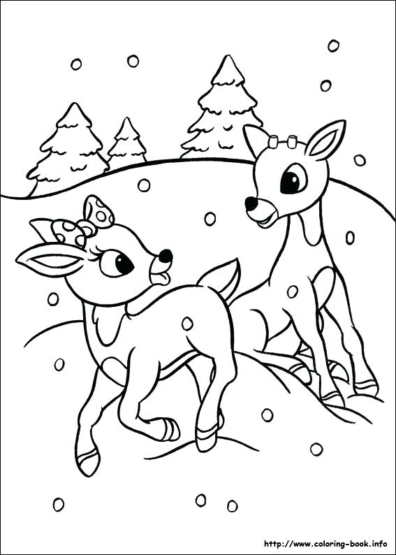 567x794 Reindeer Coloring Page The Red Nosed Reindeer Coloring Picture
