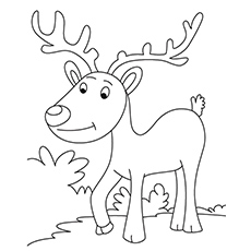 Reindeer Coloring Pages at GetDrawings.com | Free for ...
