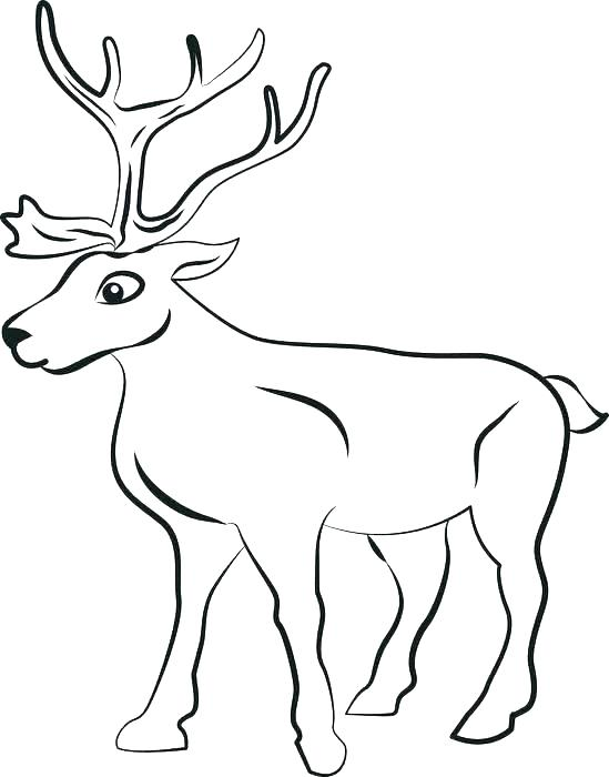 549x700 Reindeer Coloring Pages Reindeer Coloring Page Free Printable