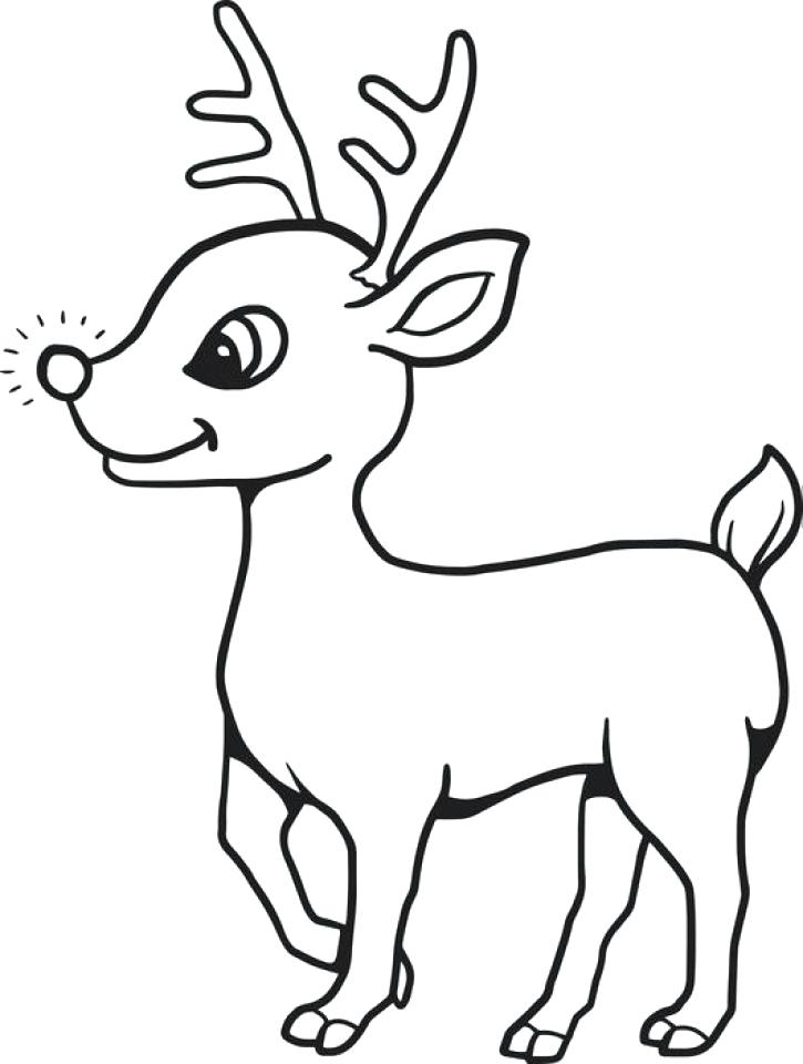 725x960 Reindeer Coloring Pages Funny Reindeer Face Rudolph The Red Nosed