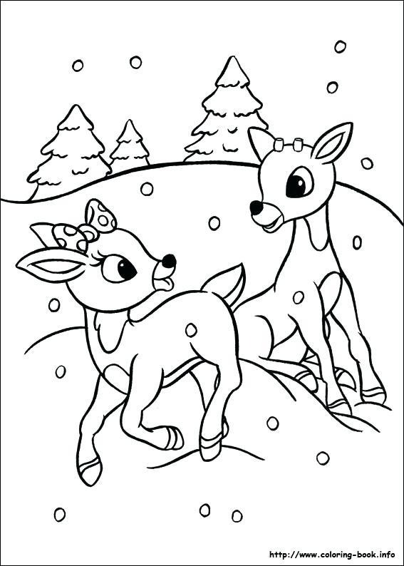 567x794 Reindeer Coloring Page
