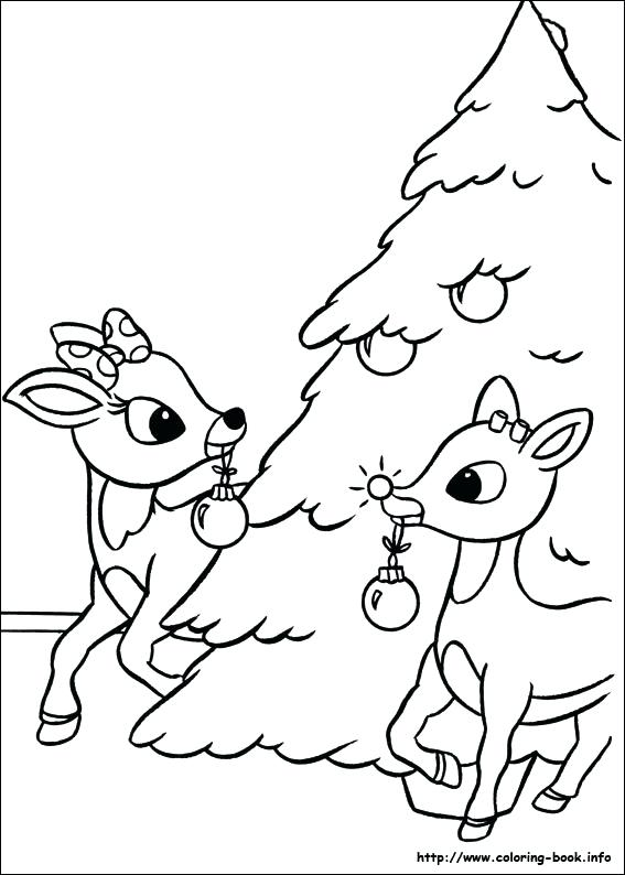 567x794 Reindeer Coloring Pages
