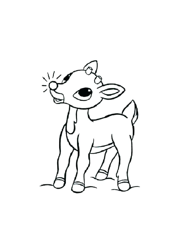 736x951 Coloring Reindeer The Red Nosed Reindeer Coloring Picture Coloring