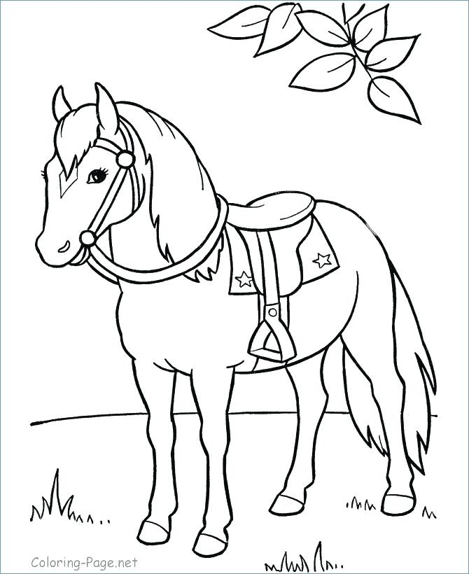 670x820 Head Coloring Page Horse Coloring Pages Preschool And Kindergarten