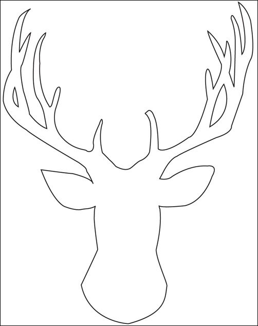 502x634 Best Animal Coloring Pages For Adults Images
