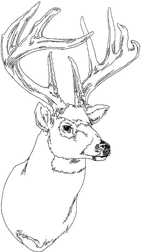 500x860 Printable Reindeer Face Reindeer Face Printable Cartoon Reindeer