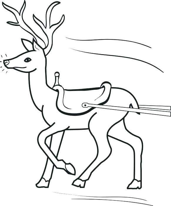 581x700 Reindeer Colouring Pages Reindeer Color Page Reindeer Coloring