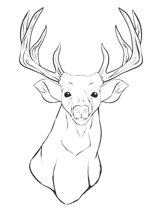 680x911 Reindeer Head Coloring Page Deer Pages Print Hand Colouring Book